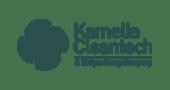 Kamelia CLeantech Logo - 2 - Digital Marketing Clients