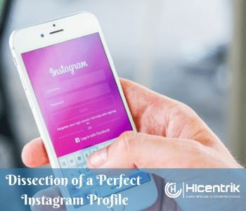 Dissection of a Perfect Instagram Profile – Online Reputation Management